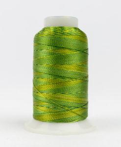 Multicolor Accent Green Foliage