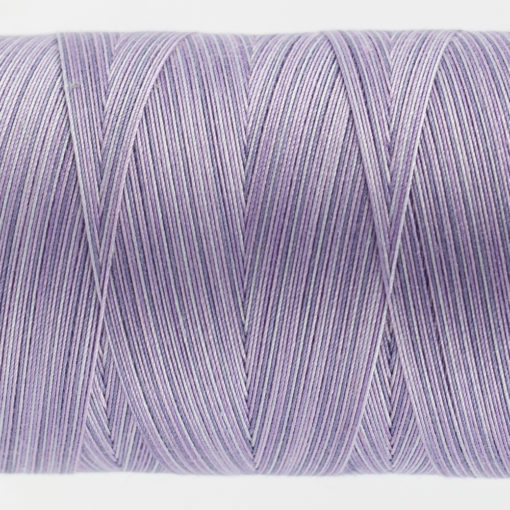 Tutti Lavender